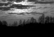 Fot. Dariusz Pawlicki